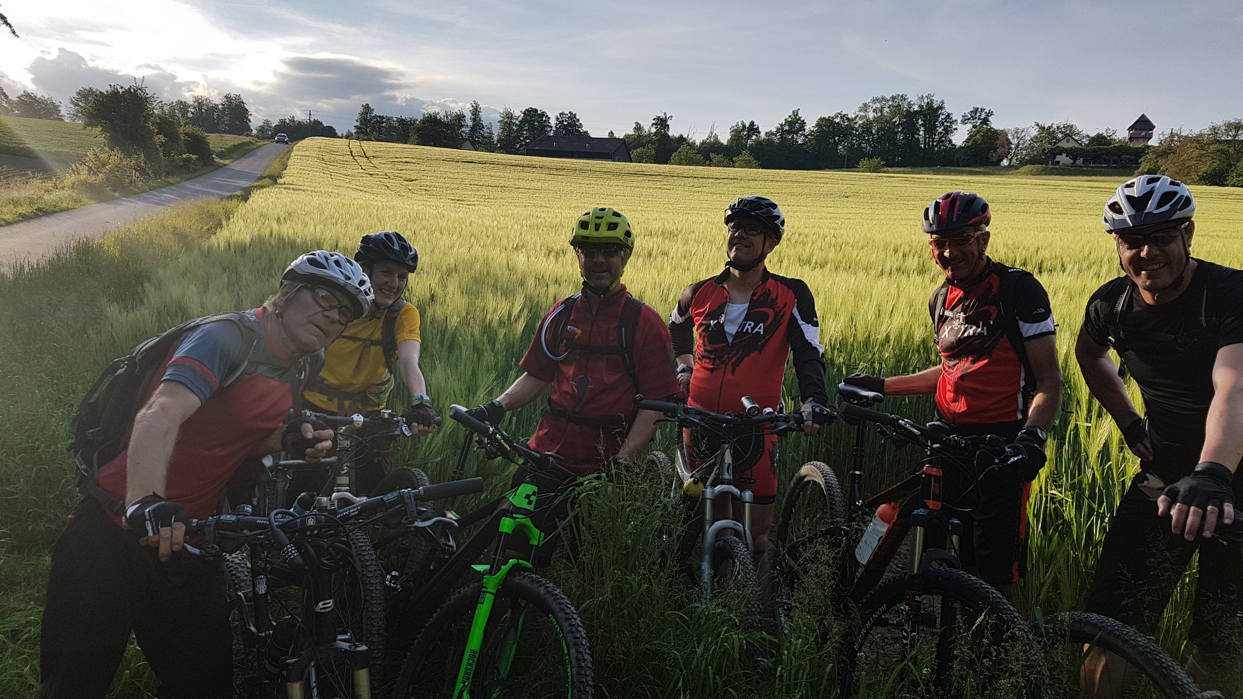 Biker im Kornfeld