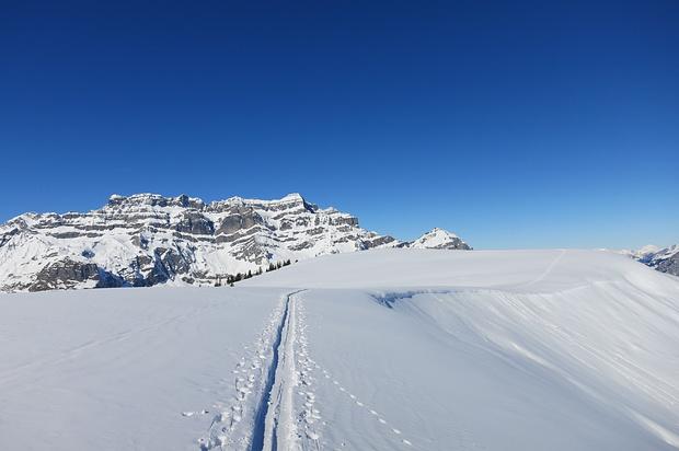 Schneeschuhtour Rüfihorn