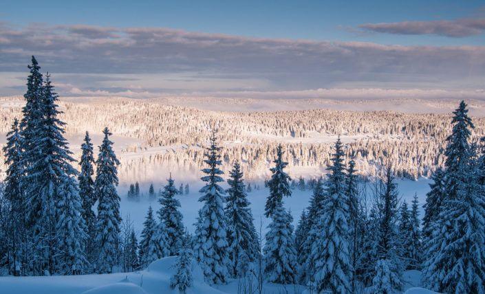 Schneeschuhwochenende im Vallee de Joux (F)