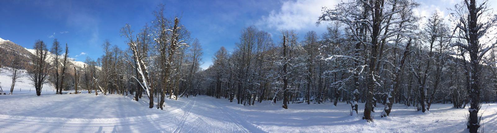 Langlauf-Weekend Goms 1./2. Dezember 2018