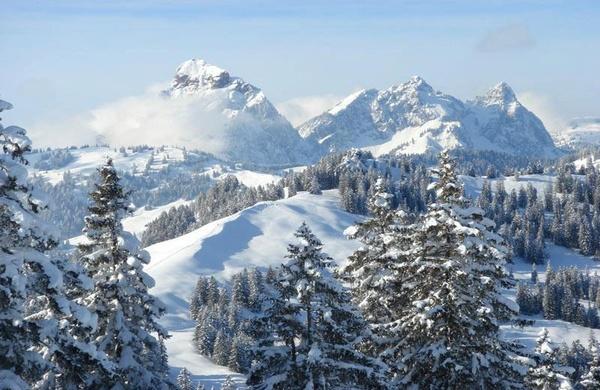 Schneeschuhtour Ibergeregg, anl. Oberberg Weekend