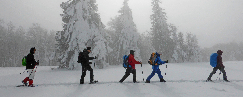 Schneeschuhtour Grenchenberg
