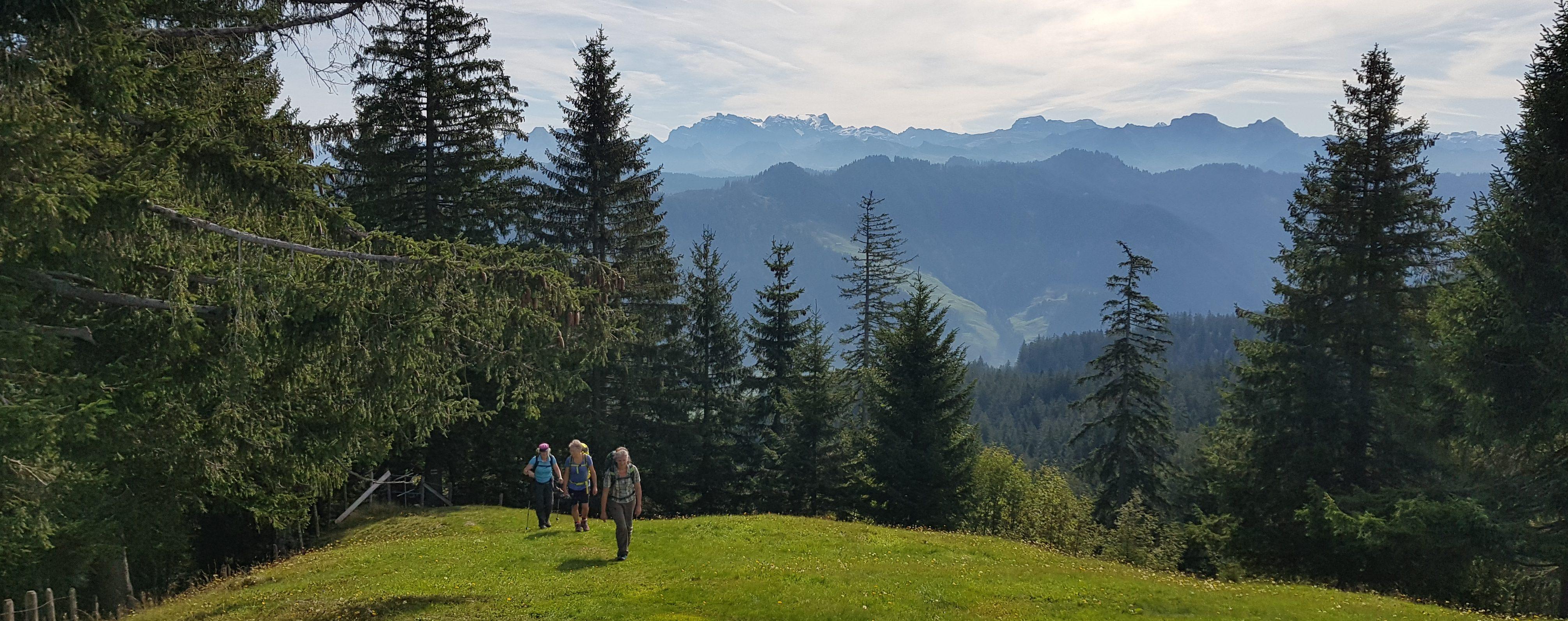 Wanderung zum/vom Oberberg 2019