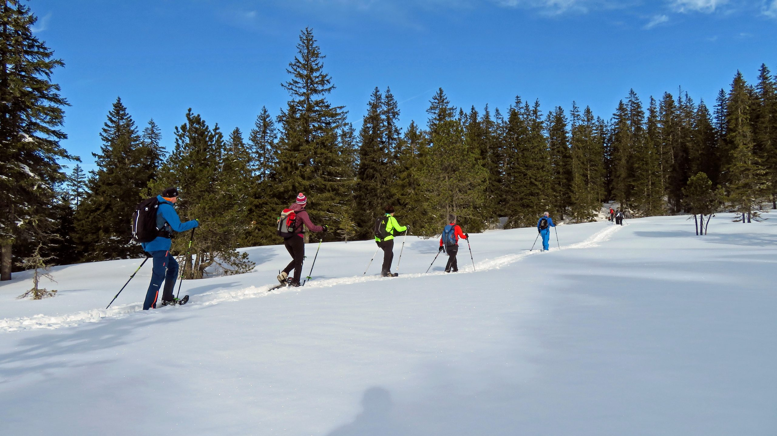 Schneschuhtour Jänzitrail