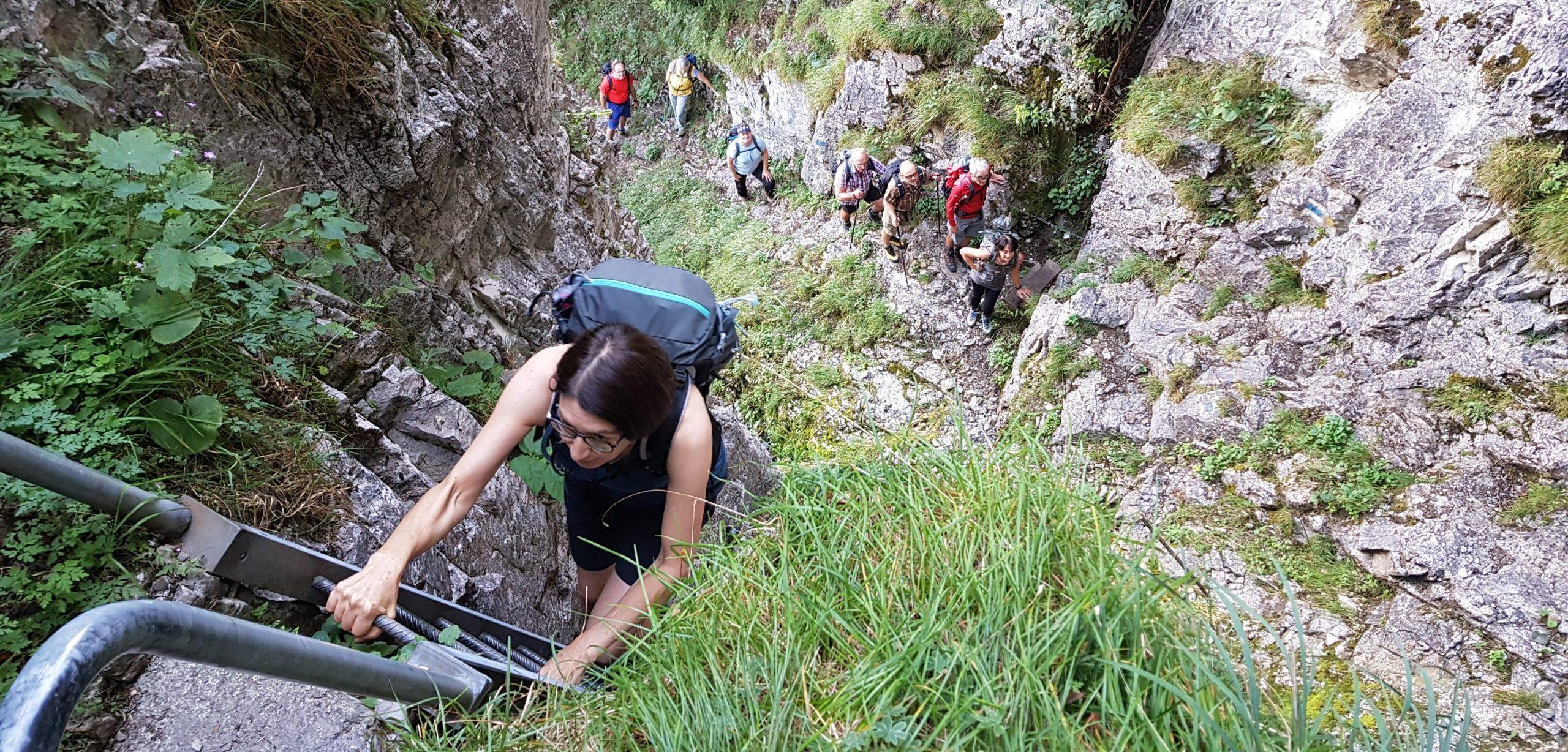 Wanderung Drues- und Forstberg
